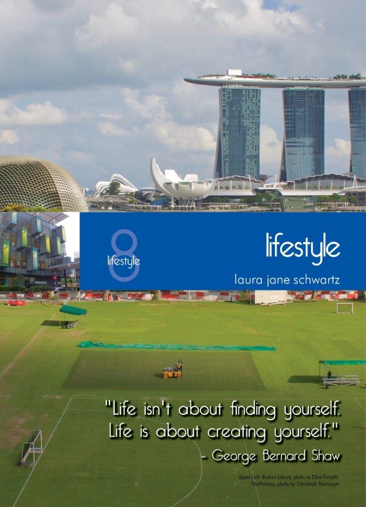Living In Singapore - Lifestyles: Fourteenth Edition Reference Guide (2016)